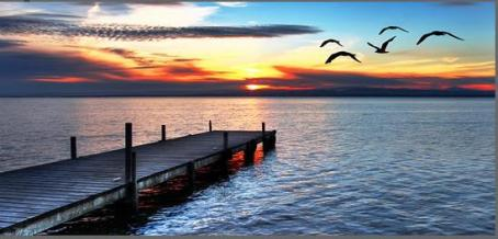 birds-flying-over-the-pier-at-sunset-44x20-inch-113cm-panoramic-canvas-picture-2774-p